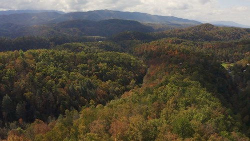 East TN Unrestricted Land For Sale Sevier County Tennessee