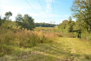 65.48 ACRES PASTURELAND, TIMBERLAND FOR SALE PIKE COUNTY, MS