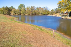 TAYLORVILLE BUILDING SITE ON THE LAKE LOT B