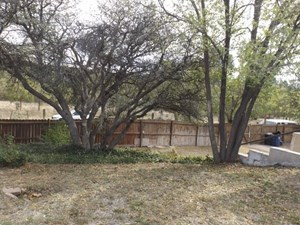 LARGE COUNTRY HOME FOR SALE IN SILVER CITY NM