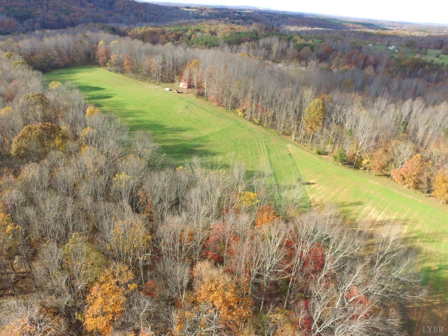 Nicely laying Farm Land in Callands, VA with Cabin