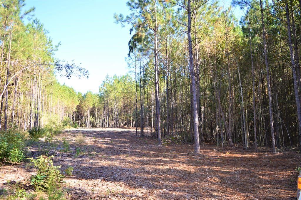 3.01 Acre Country Home Site Land for Sale, McComb, MS