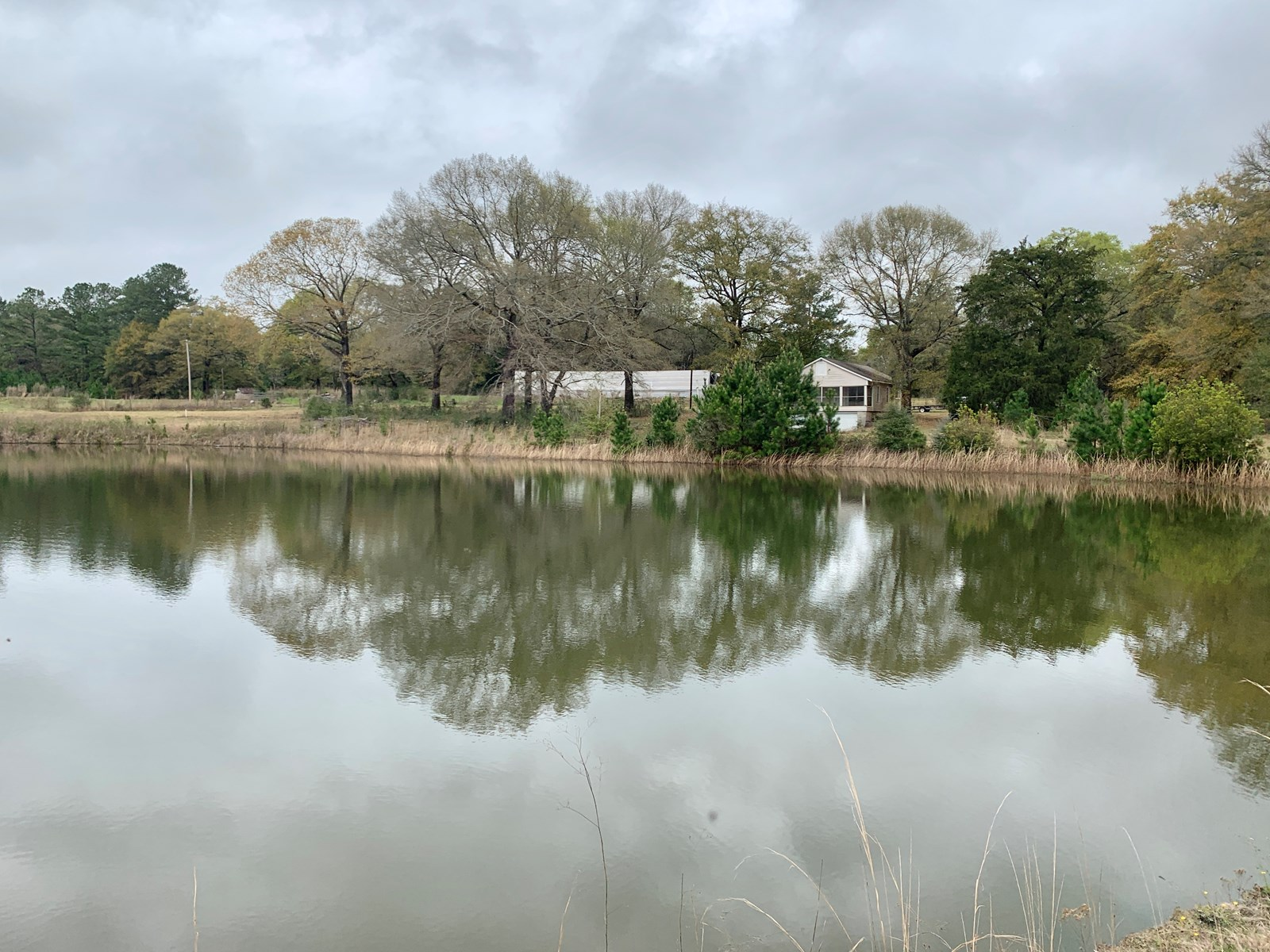 Country Home With Pond