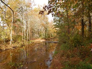 TN. HISTORIC HOME, 6 ACRES LAND WITH CREEK FOR SALE!!