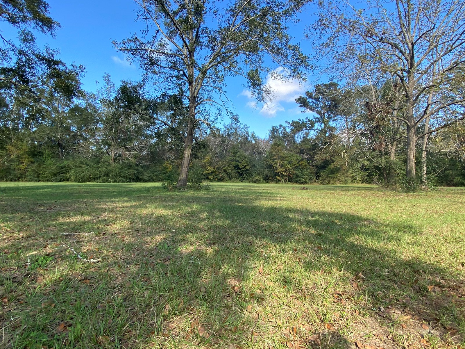 2 Acres for Sale in Slocomb, Alabama