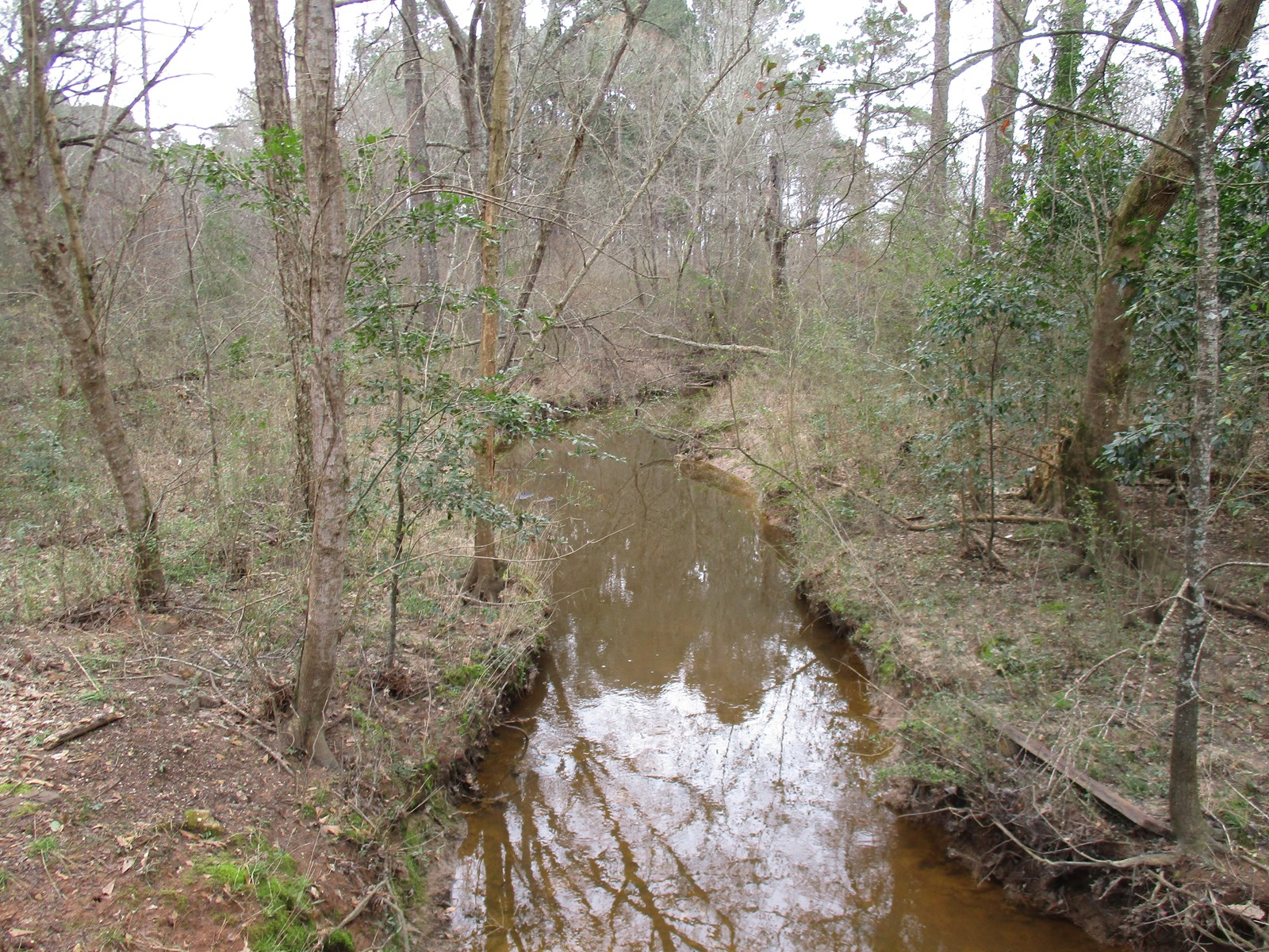 East Texas Recreational/Hunting/Timber Land For Sale