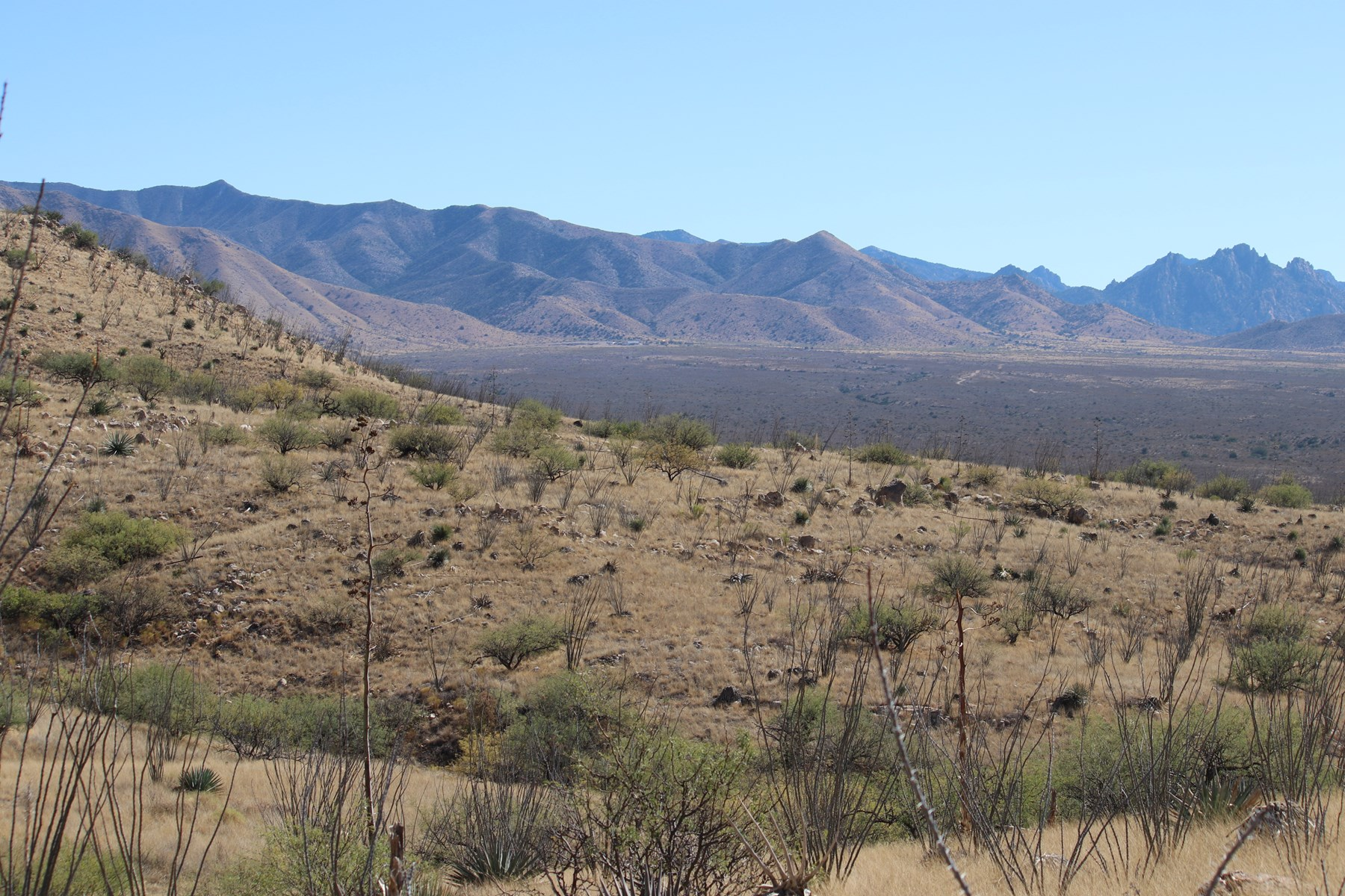 200 ACRES on the WESTERN SLOPE OF THE AZ DRAGOON MOUNTAINS