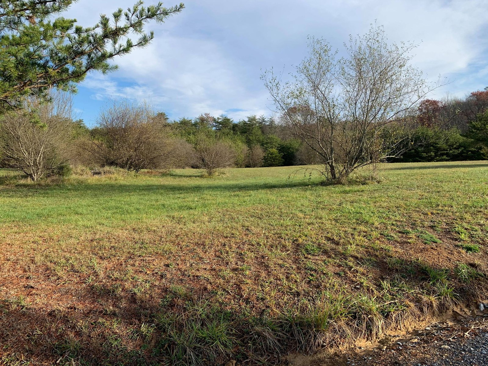 Rolling 2.07 acre lot with great views