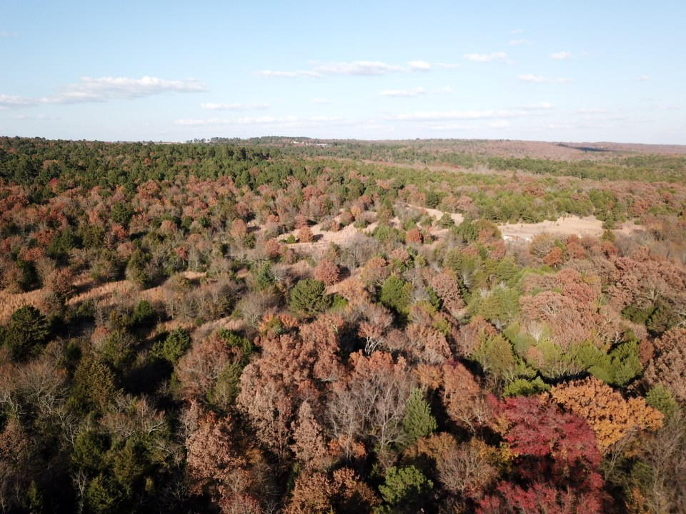 148 ACRES OF LAND FOR SALE