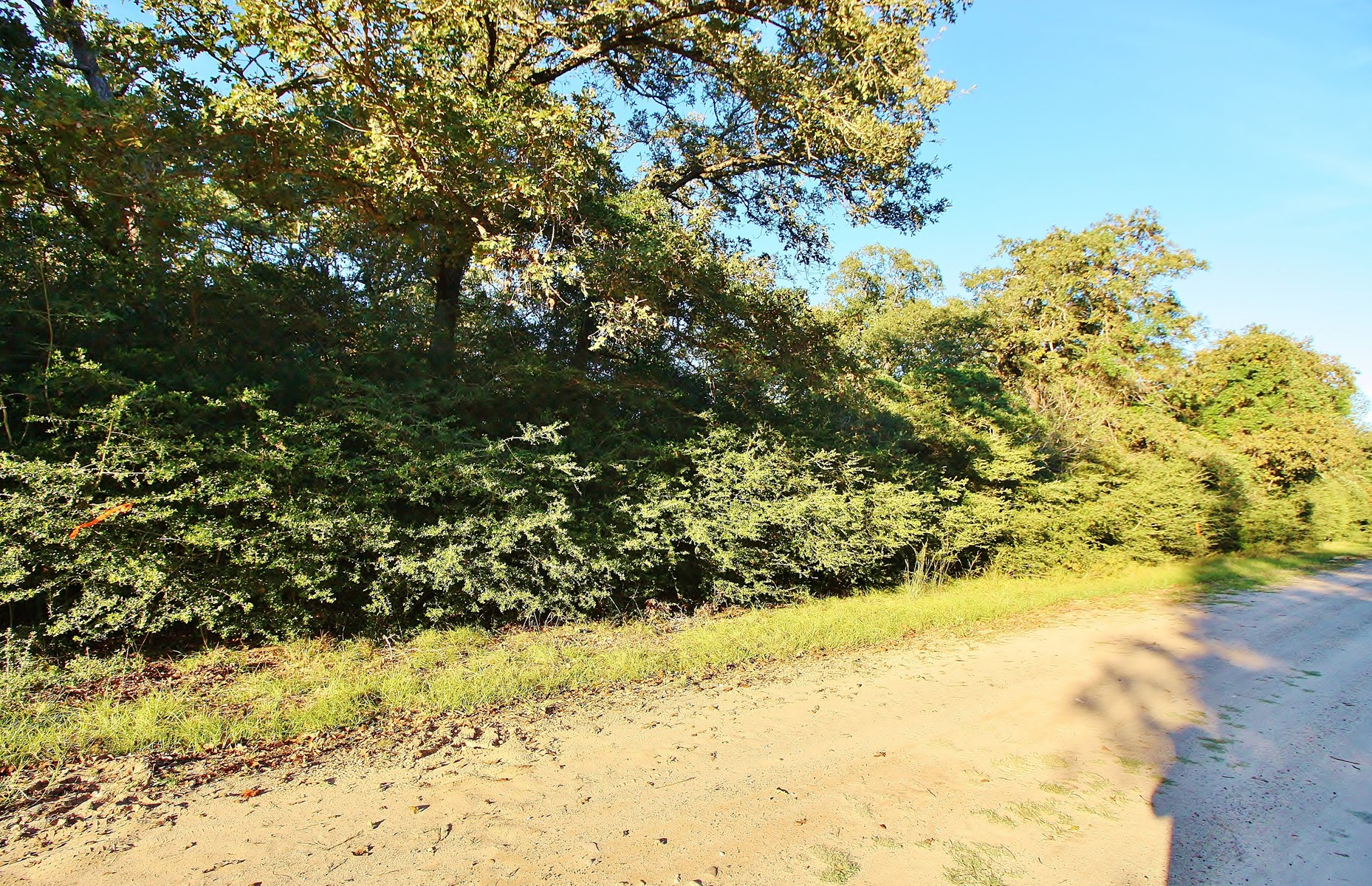 Buildable Lot for Sale in Hilltop Lakes, TX