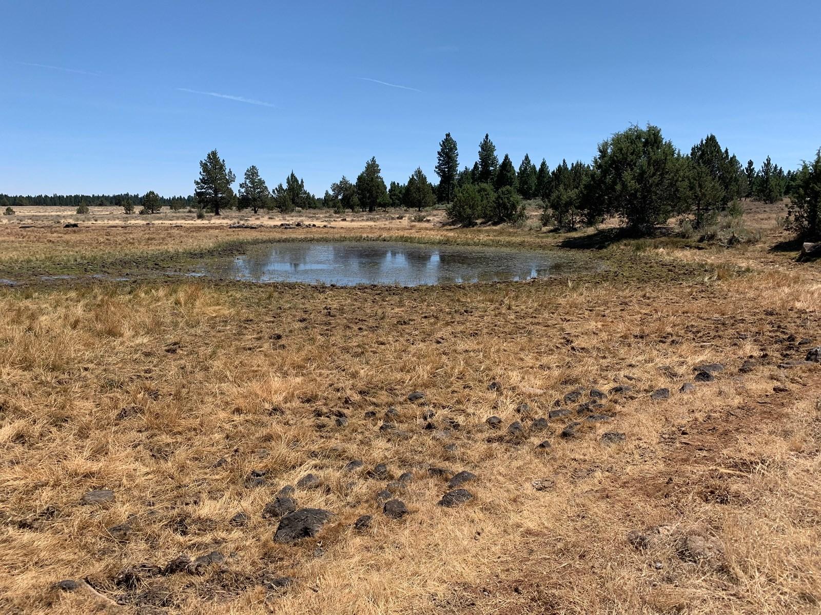 Pease Flat, 320+/-acres