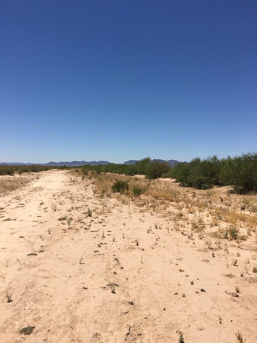 Bulk sale of 5 Lots Salome Arizona Dick Wick Hall Ranchos