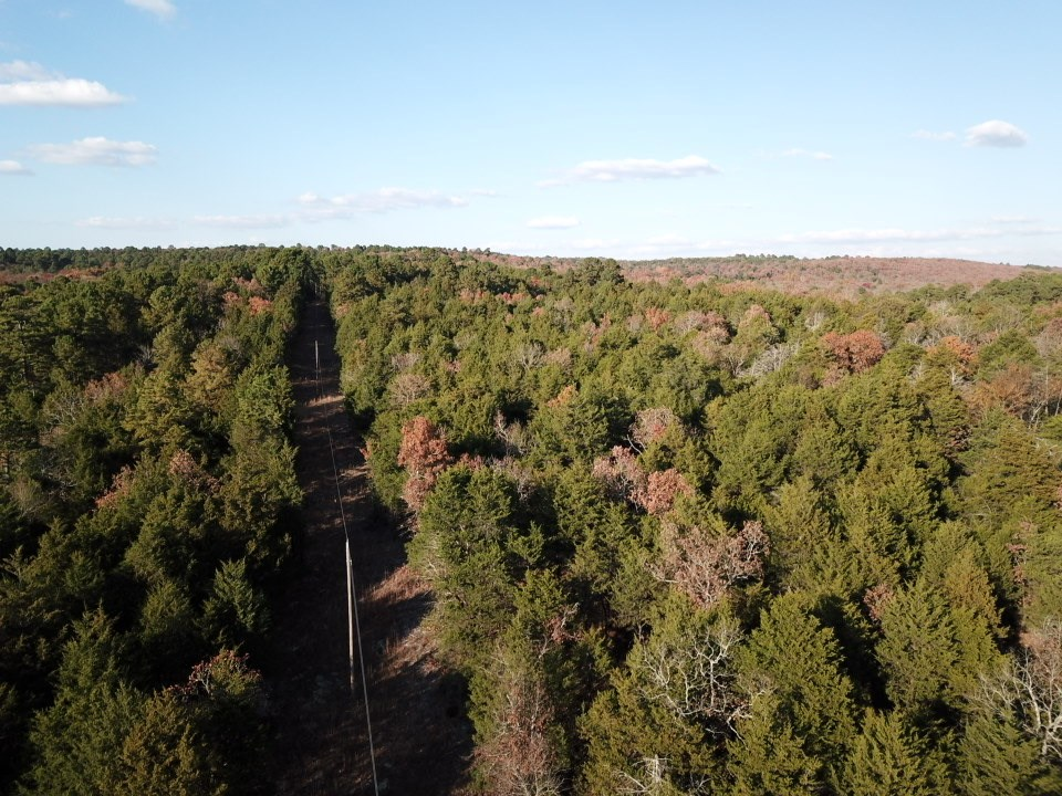 30 ACRES OF LAND FOR SALE