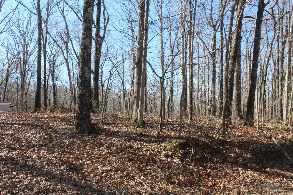 Two Acres of Unrestricted Land