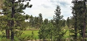 BUILD ON THIS BEAUTIFUL LOT IN FOX ACRES