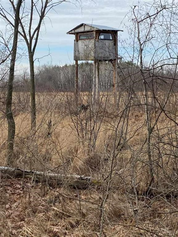 Acreage For Sale, Waushara County