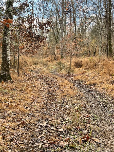 trails throughout property