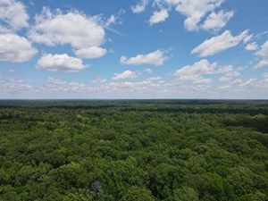 HUNTING PROPERTY FOR SALE IN CENTRAL ARKANSAS NEAR SHERIDAN