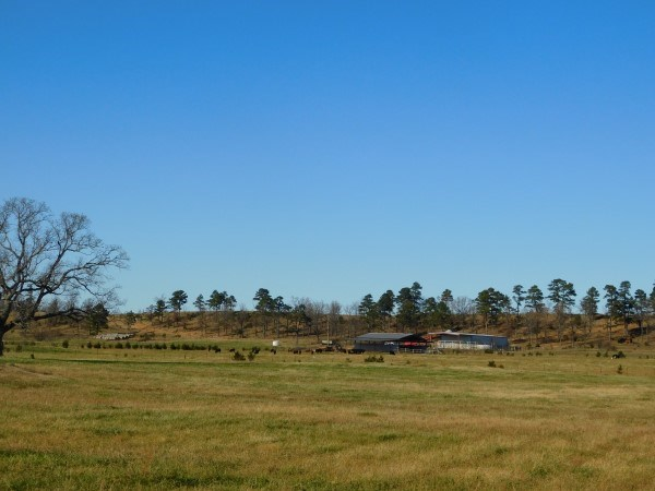 80 ACRE SOUTHEAST OKLAHOMA RANCH