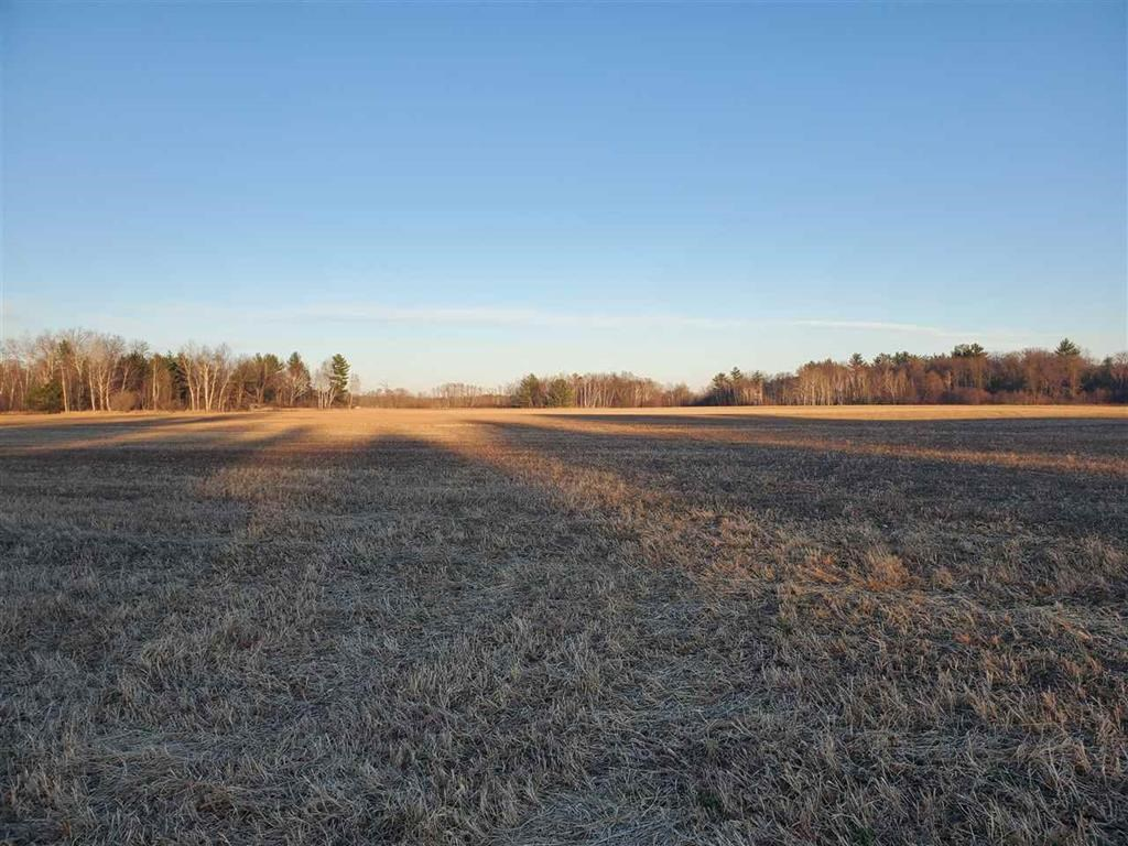 Land For Sale near Saxeville, WI