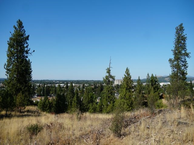 Extradentary View of Downtown Spokane!