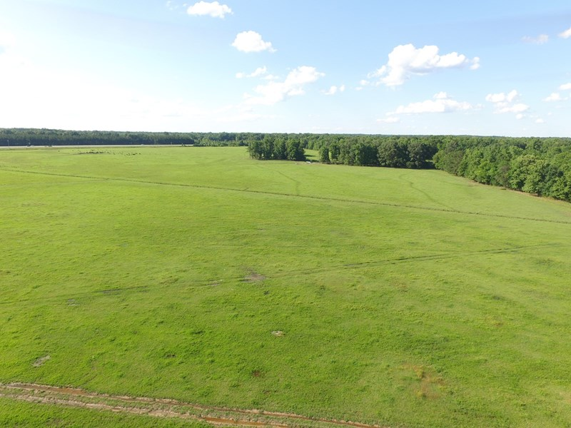 large open pastures