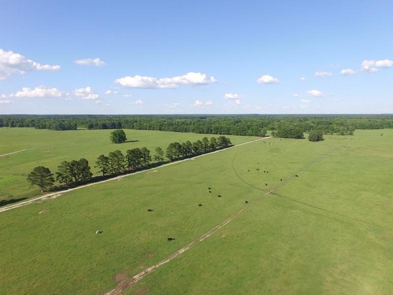 ranch for sale near Little Rock