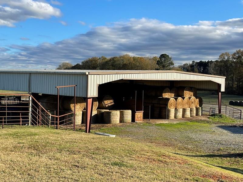 hay barn cattle