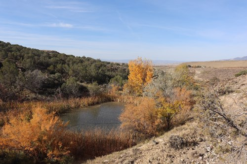189 acres to hunt, fish, and play in western Colorado