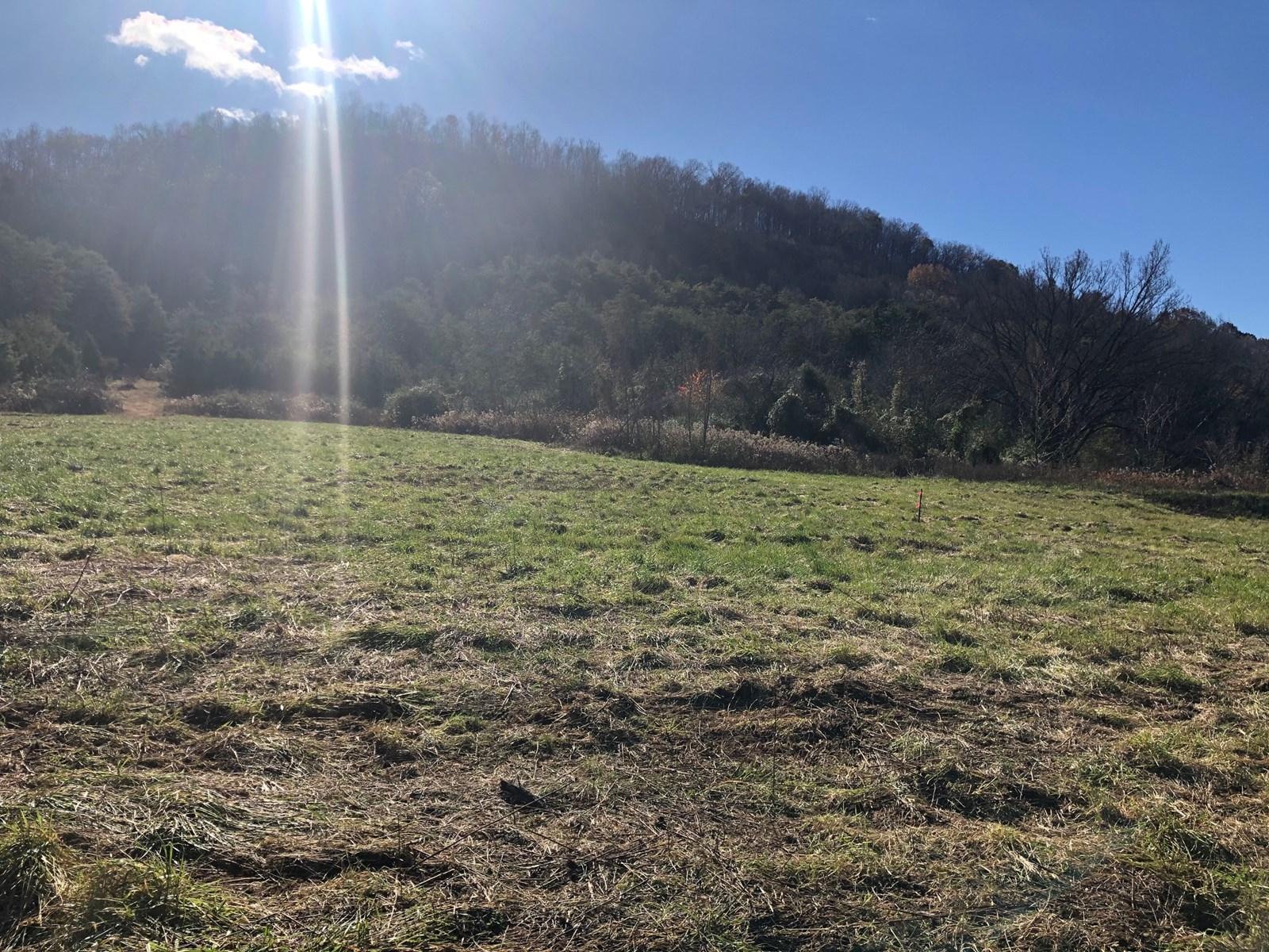 5 Acres Unrestricted Land For Sale in East TN