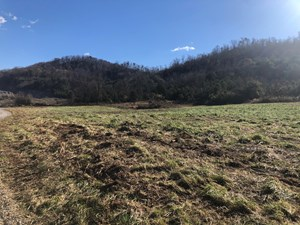 6 ACRES UNRESTRICTED LAND FOR SALE IN EAST TN