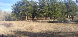 Opportunity to Own a Mountain Lot In Fox Acres Community