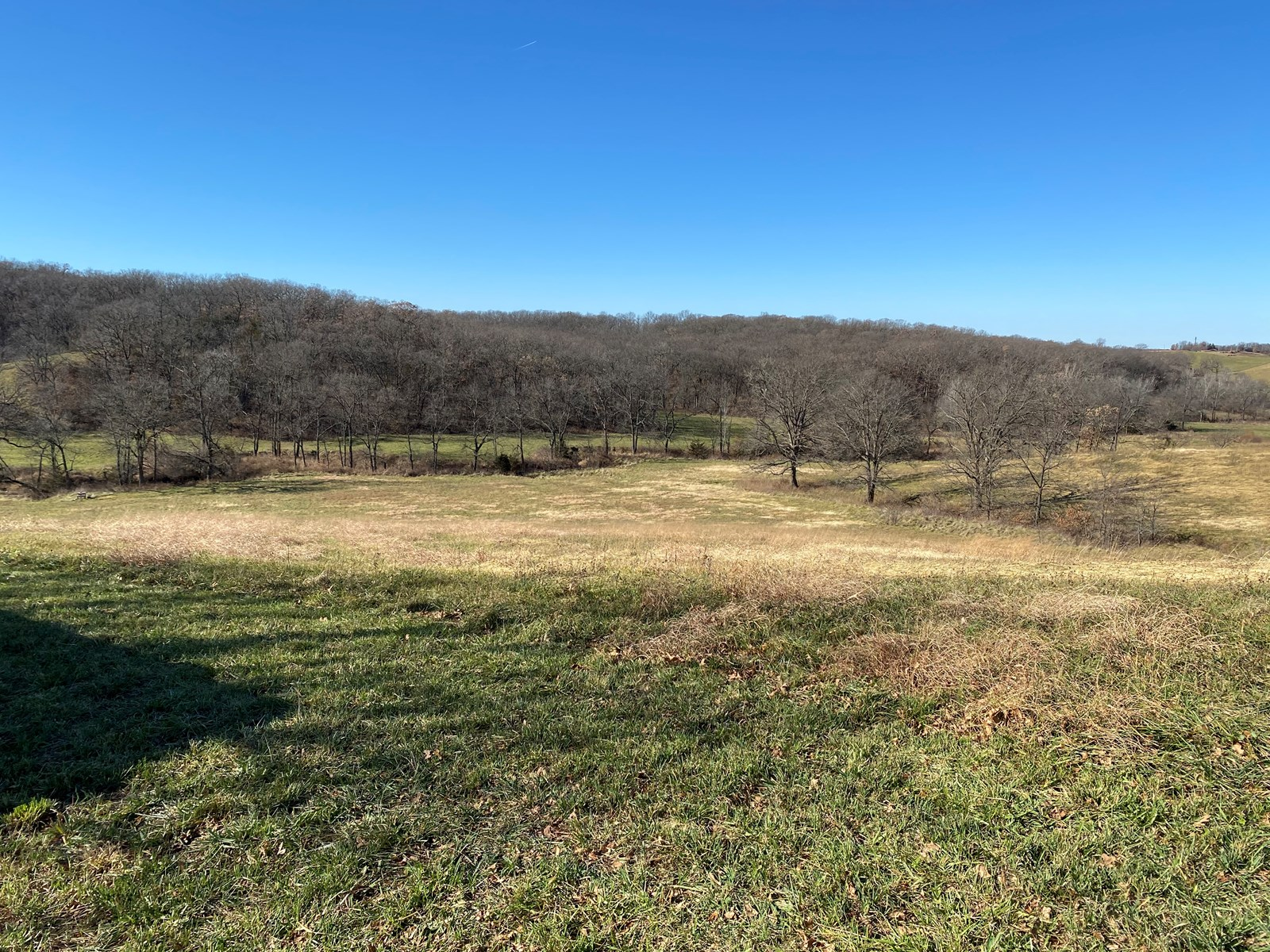 50 acres +/- Combination Hunting Property   Macon County