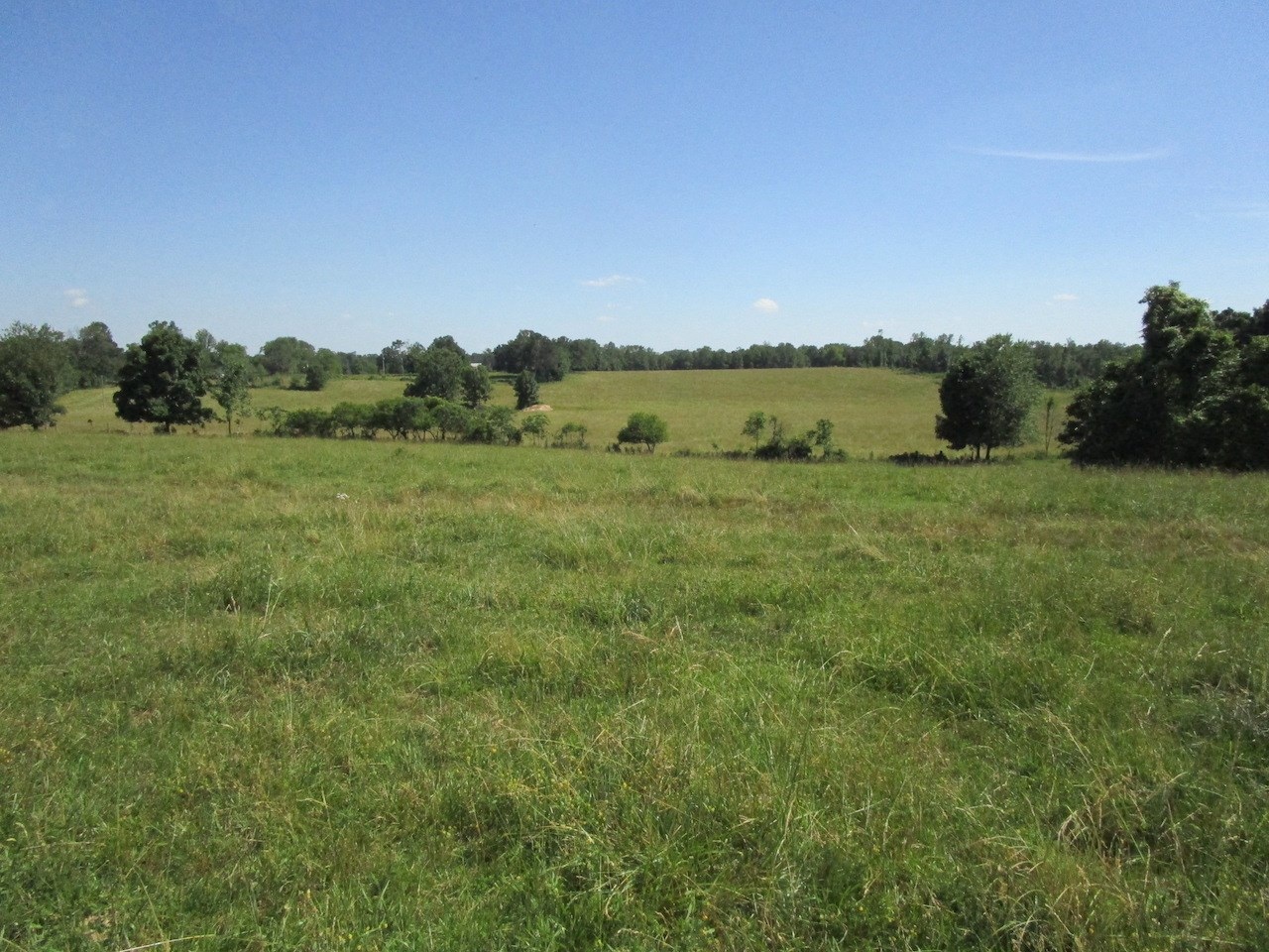 Farm Land for Sale in South Central Missouri