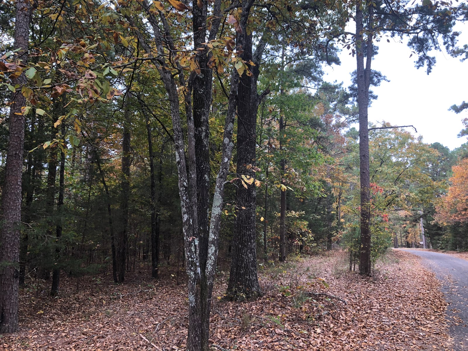Greers Ferry Lake Lots For Sale