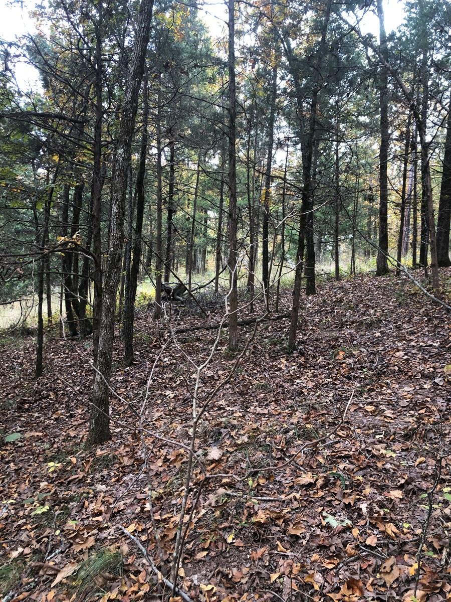 Greers Ferry Lake Lots For Sale Drasco Arkansas