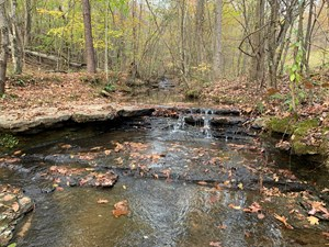 RECREATIONAL, TIMBER,  HUNTING LAND FOR SALE IN TENNESSEE.