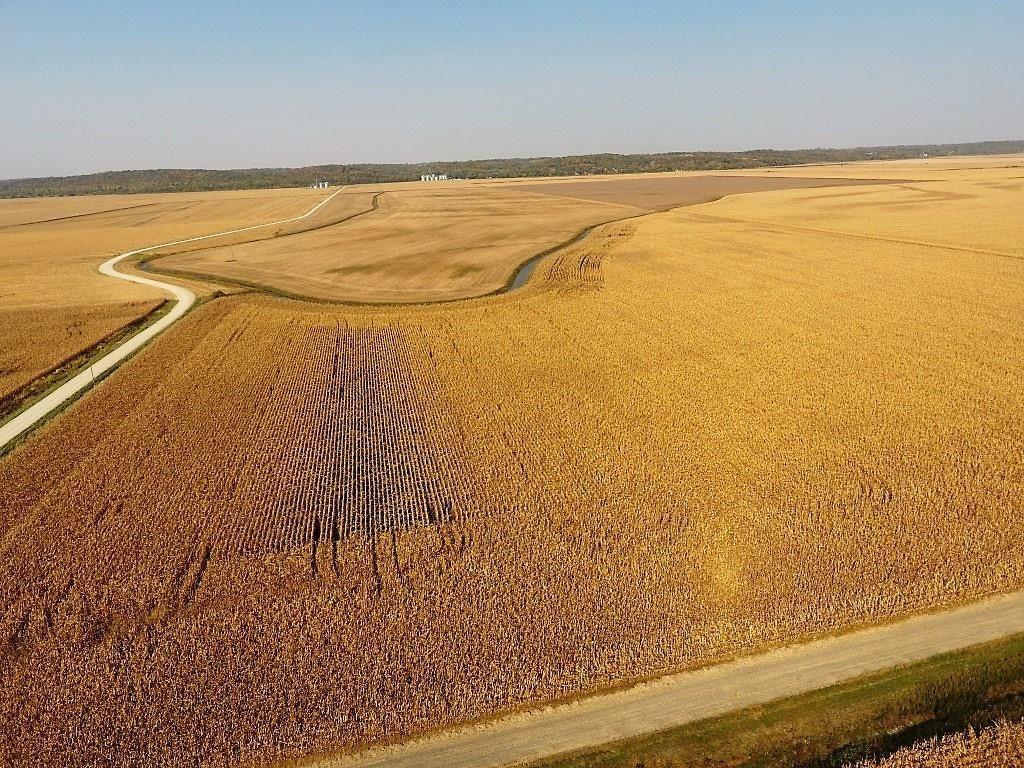 Tract 2 Highly Tillable Holt County Bottom Farm