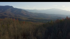 WOODLAND FOR SALE GATLINBURG TENNESSEE-SEVIER COUNTY-EAST TN