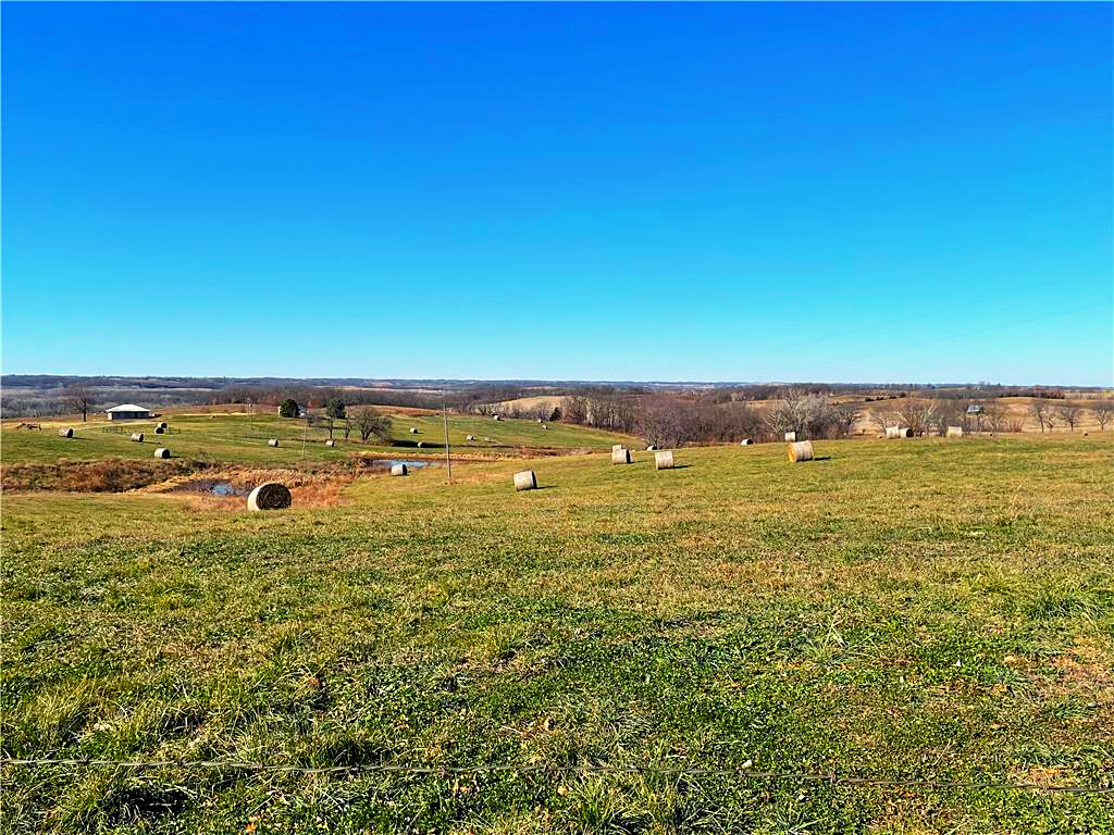 110+/- Acre Hard to Find Southern Buchanan County Farm
