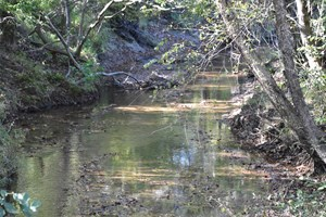 HUGE HUNTING FARM FOR SALE IN CARROLL CO. TN, TIMBER, CREEKS