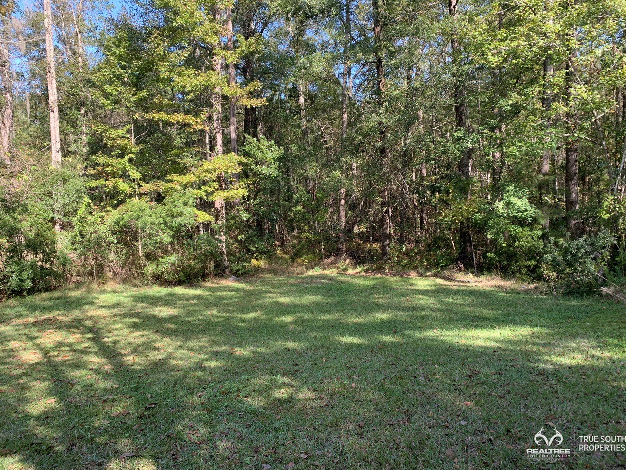 Hampton County SC Lowcountry Home For Sale