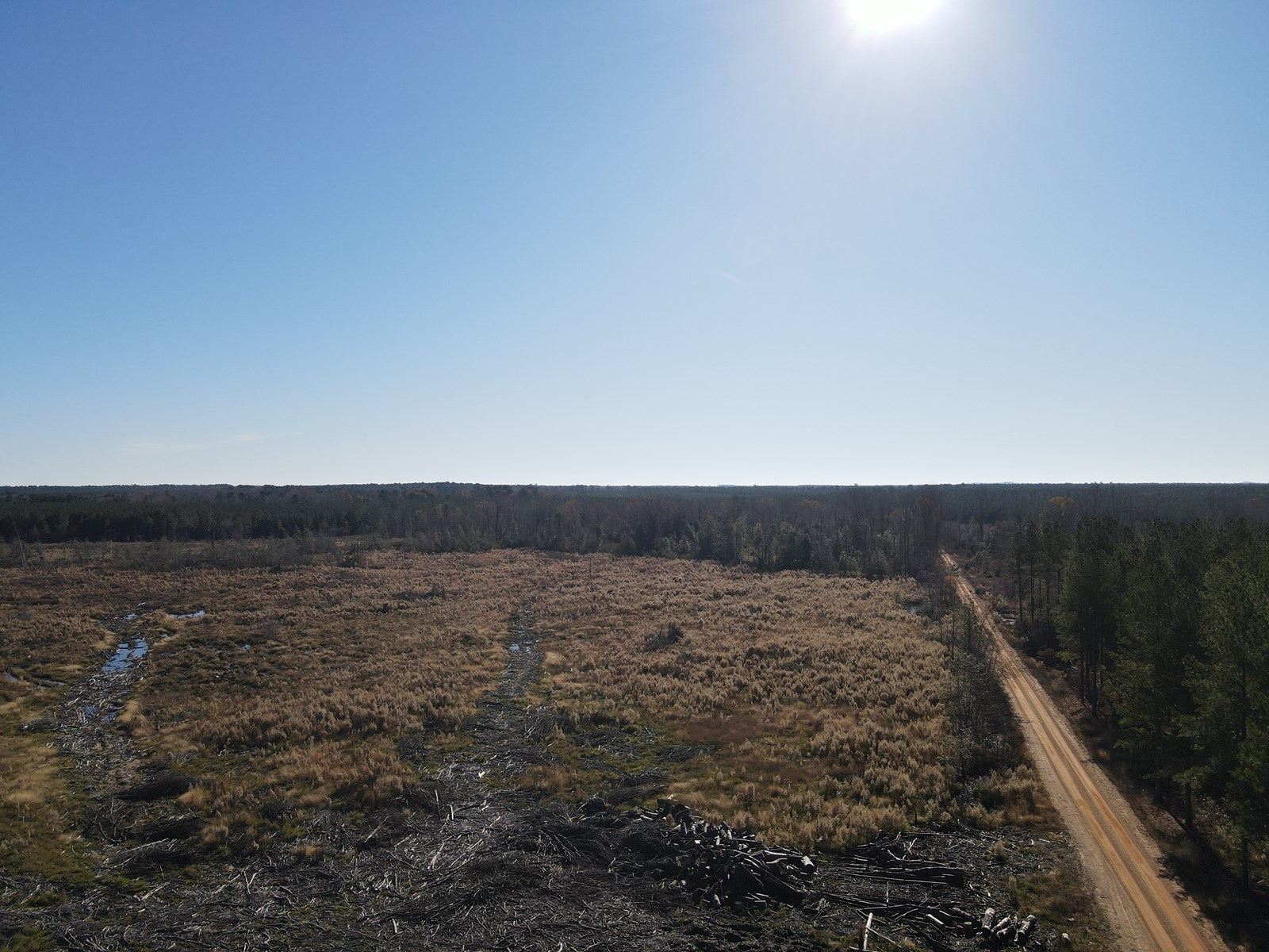 Hunting and Recreational Land in Dallas County, Arkansas