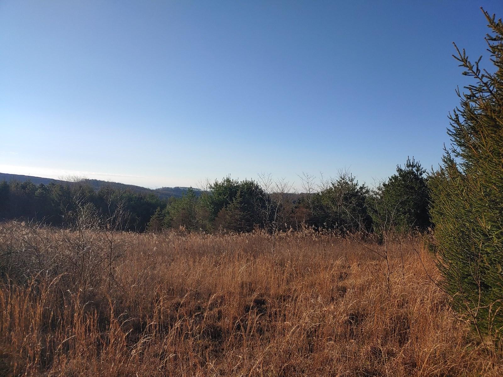 Land for Sale in Meadows of Dan VA!