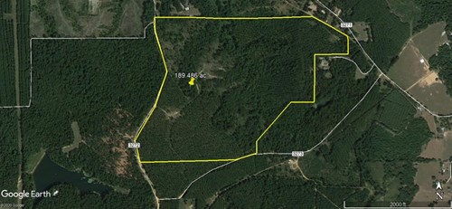 189.486 ACRES  FORESTED HUNTING/RECREATION LAND FOR SALE