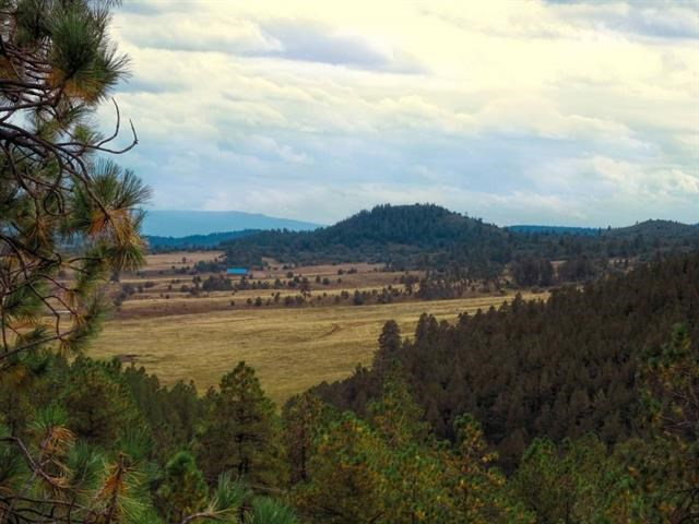 Northern NM Mountain Lot/Views/ Near Colorado Border