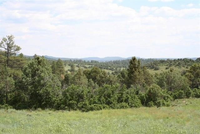 Mountain property/Trees & Views/Wildlife/Chama/Secluded