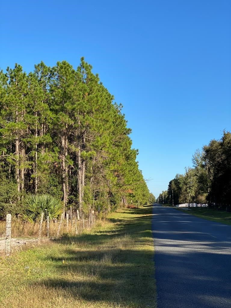 Almost 20 ACRES IN Old town, FL-WAITING FOR YOU!
