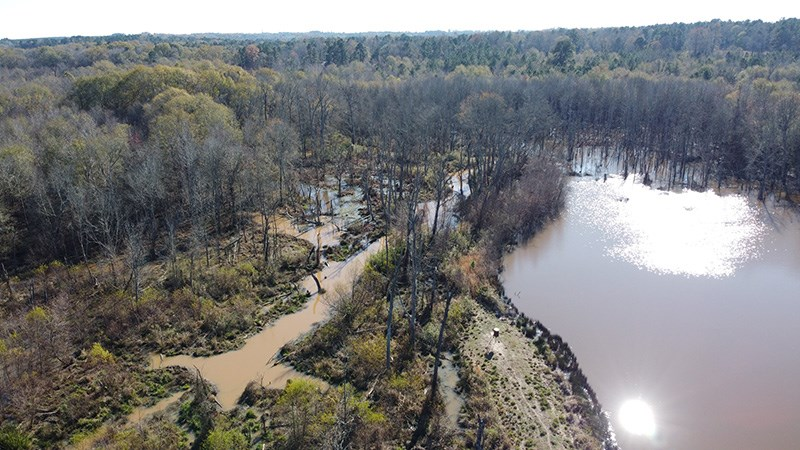 Texas Duck & Deer Hunting Land for Sale - Winona Smith Co.