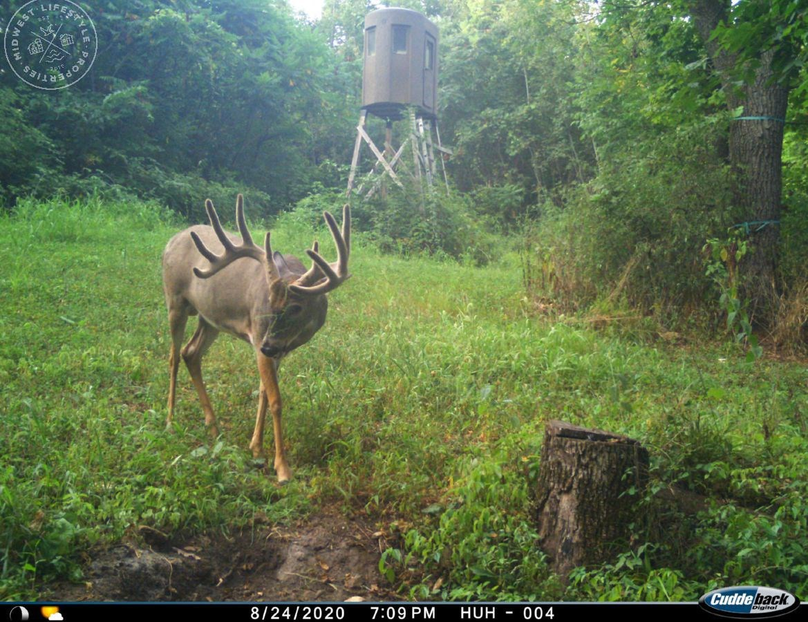 Big Buck Hunting Camp in Richland County, WI